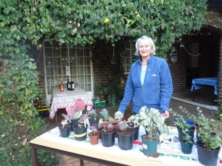 Plant sale at eco-movie night
